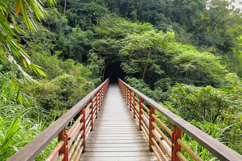 竹坑溪步道_DSC8431.jpg