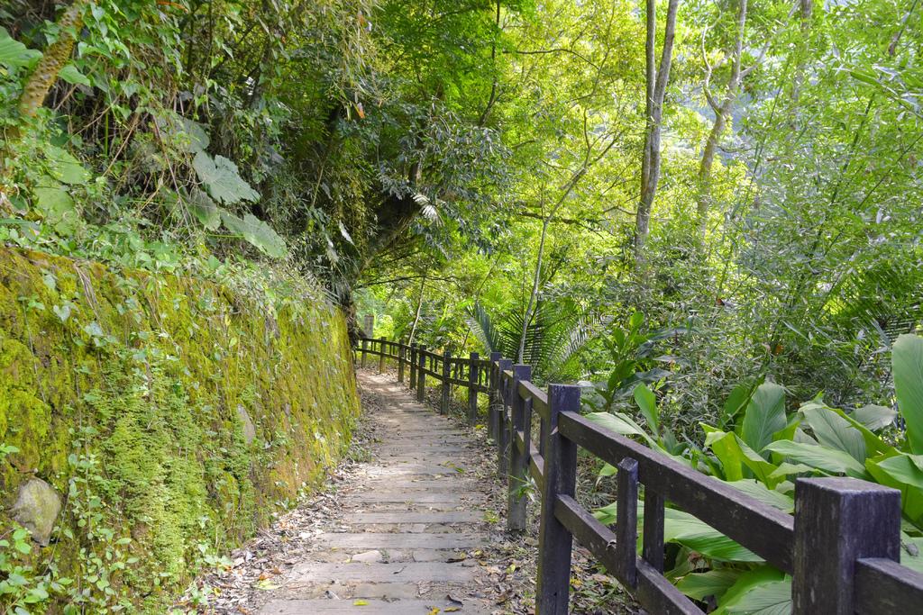 竹坑溪步道_DSC8423.jpg