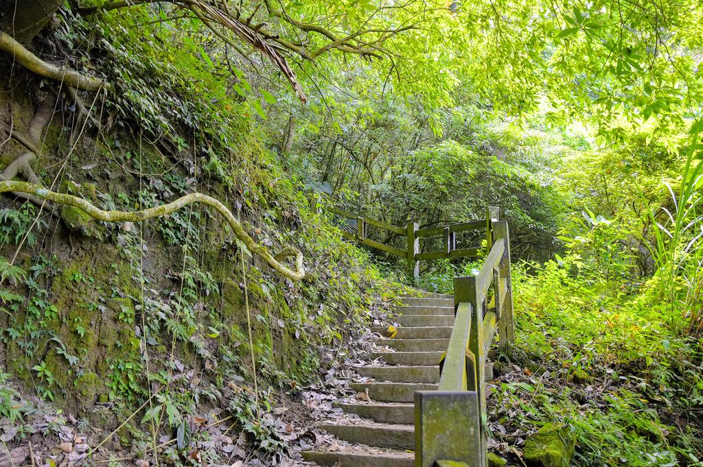 竹坑溪步道_DSC8443.jpg