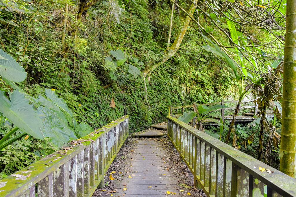 竹坑溪步道_DSC8450.jpg