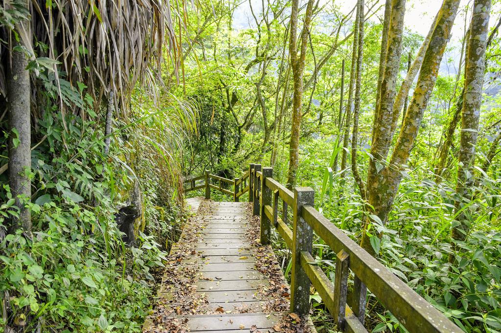 竹坑溪步道_DSC8455.jpg