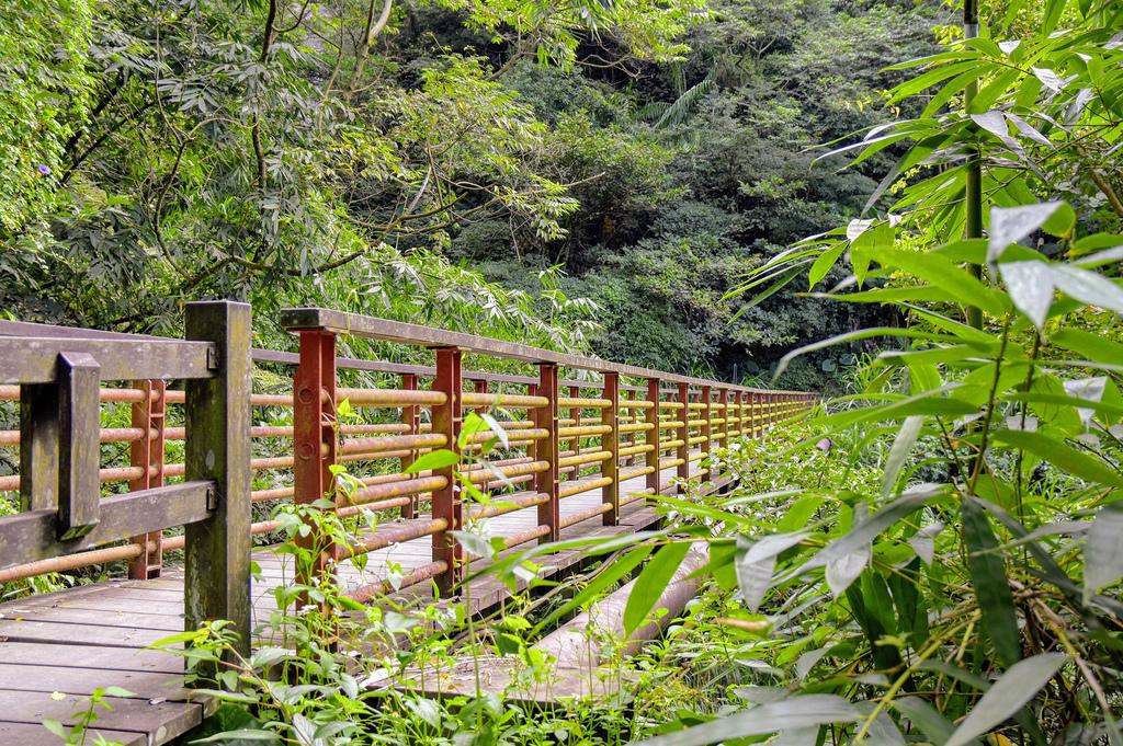 竹坑溪步道_DSC8469.jpg