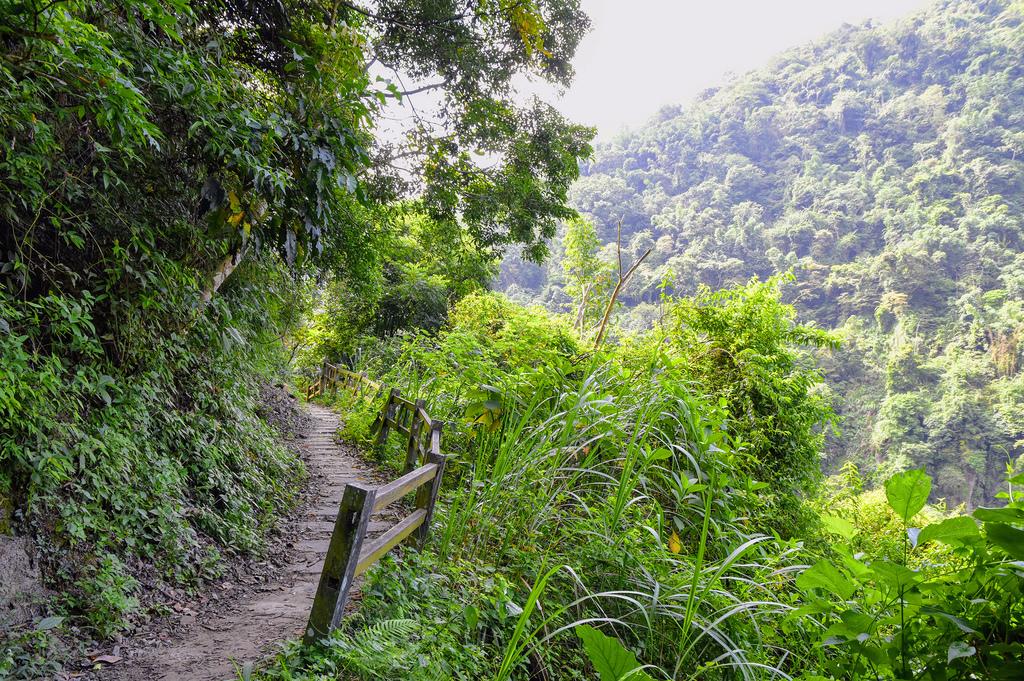 竹坑溪步道_DSC8484.jpg