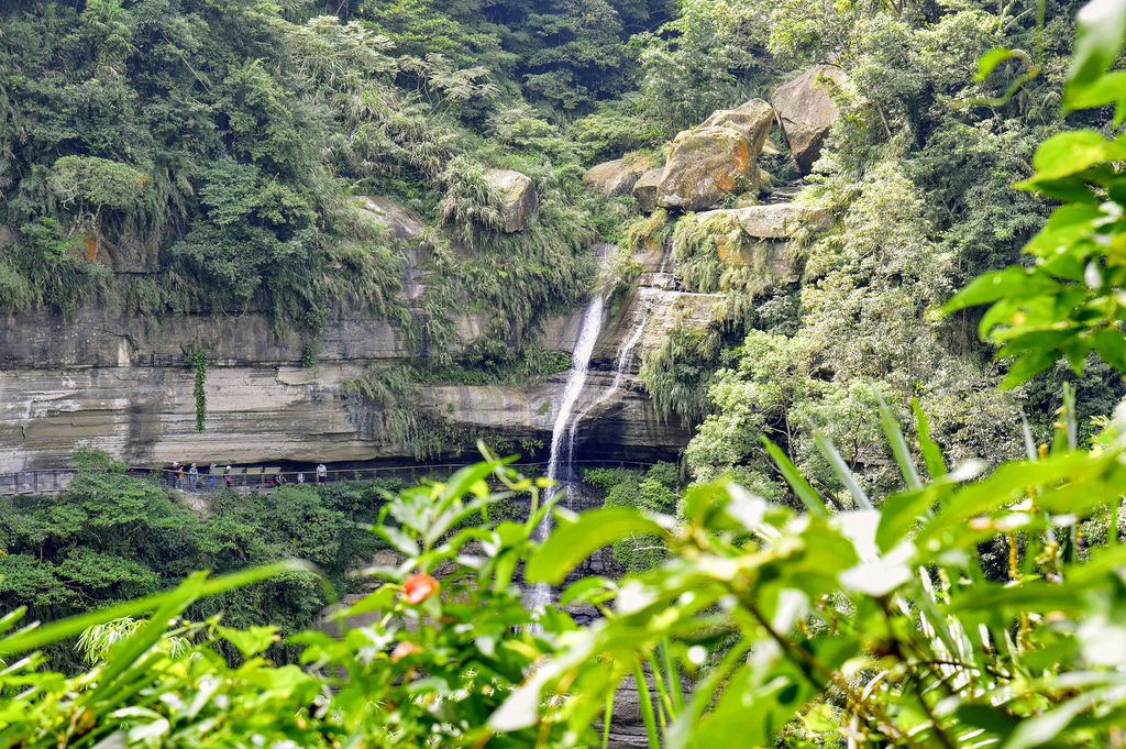 竹坑溪步道_DSC8498.jpg