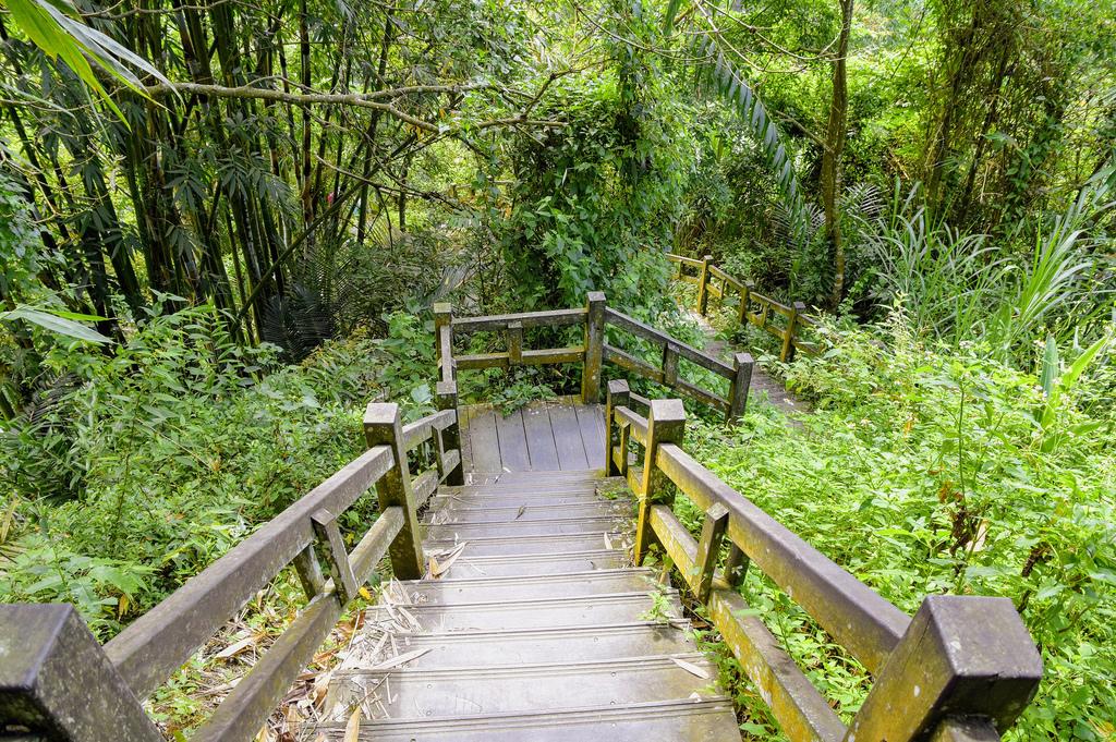 竹坑溪步道_DSC8500.jpg