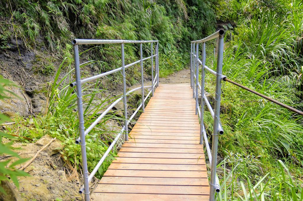 竹坑溪步道_DSC8536.jpg