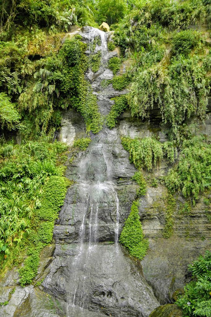 竹坑溪步道_DSC8523.jpg