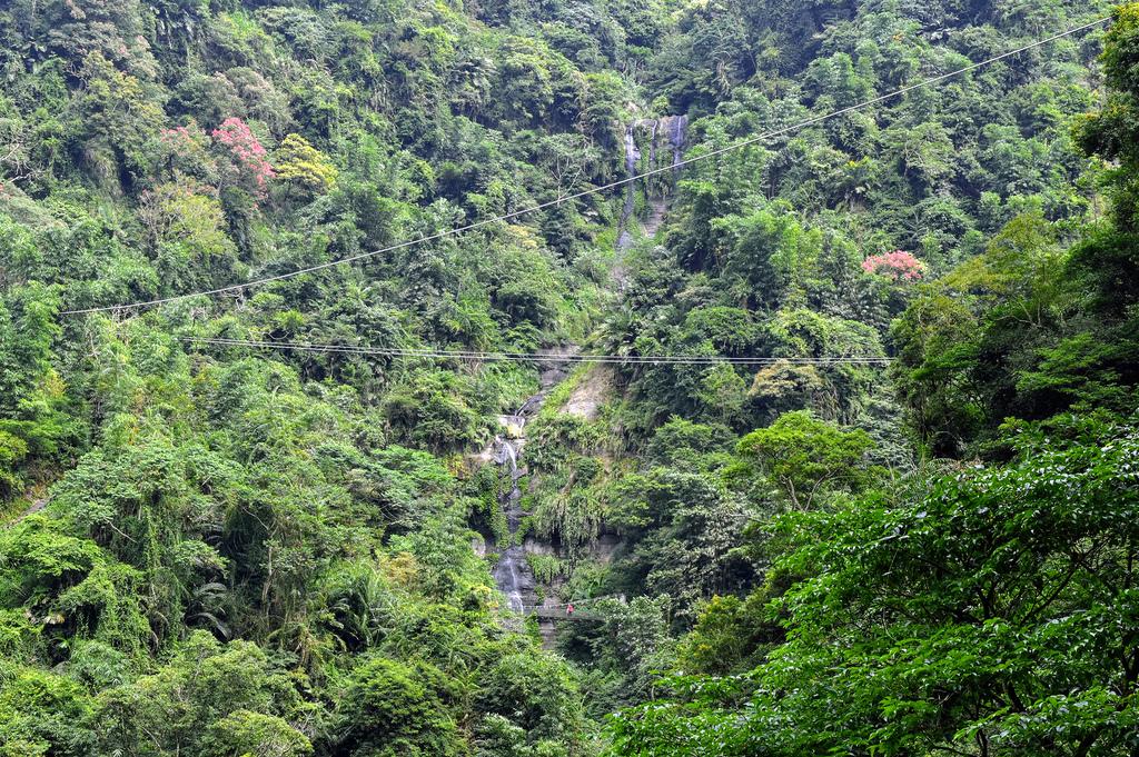 竹坑溪步道_DSC8617.jpg