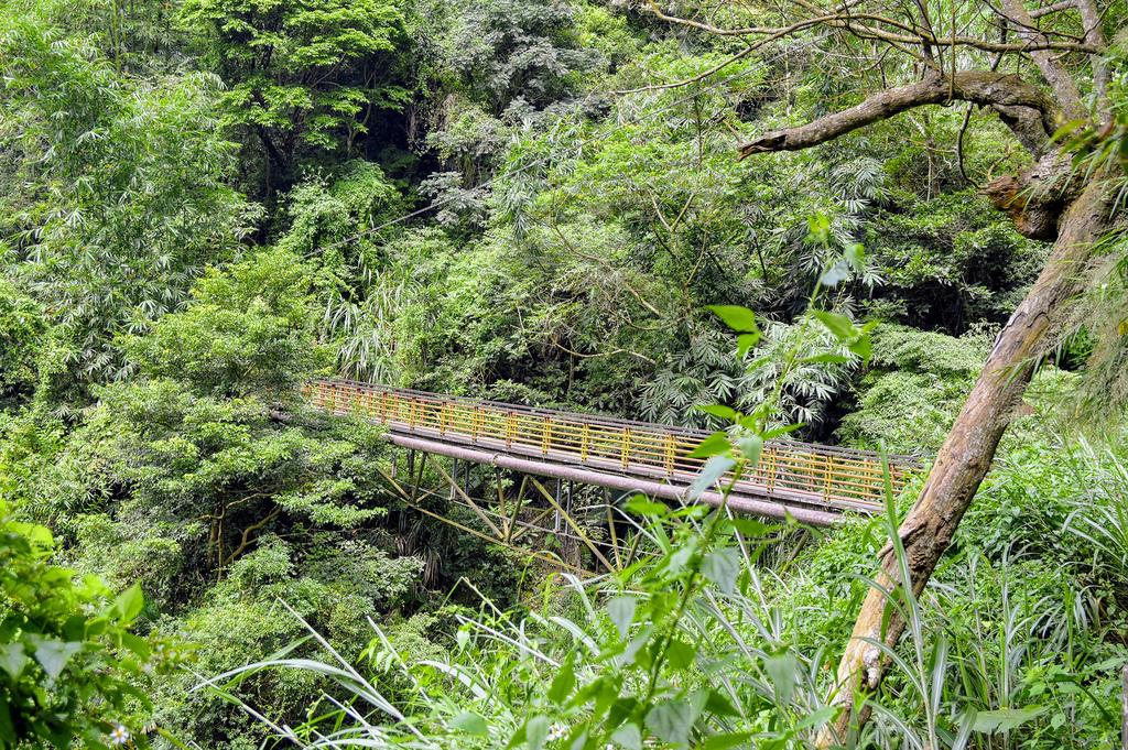 竹坑溪步道_DSC8631.jpg
