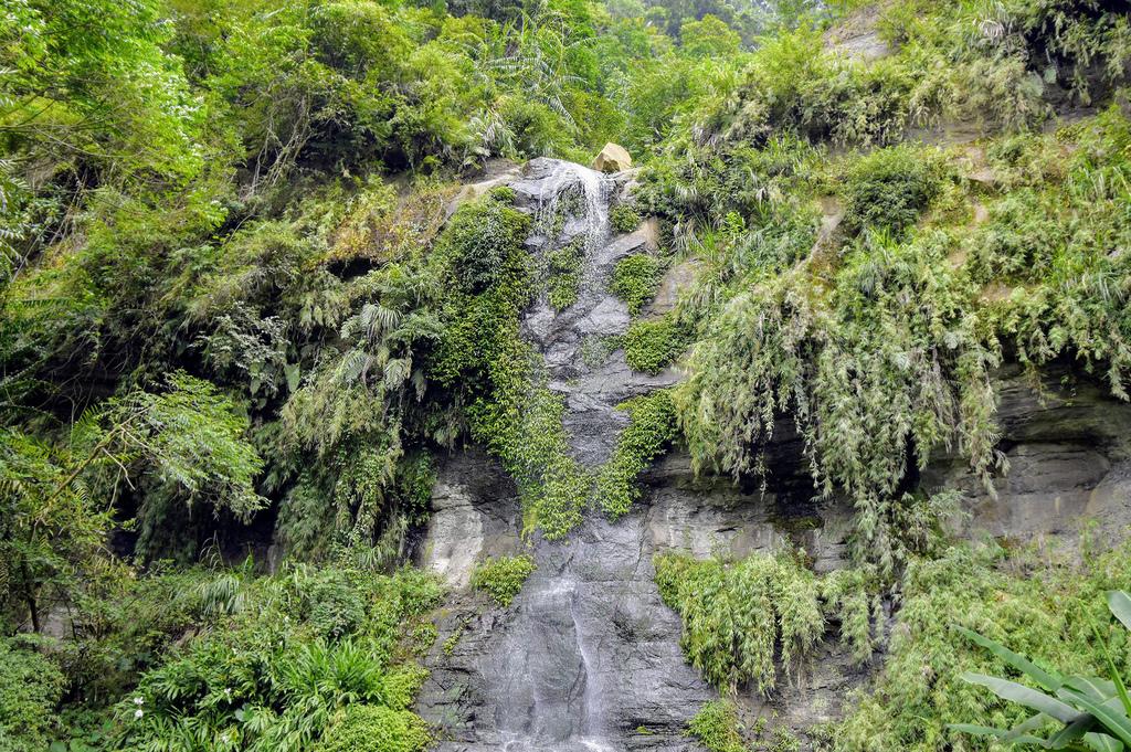 竹坑溪步道_DSC8629.jpg