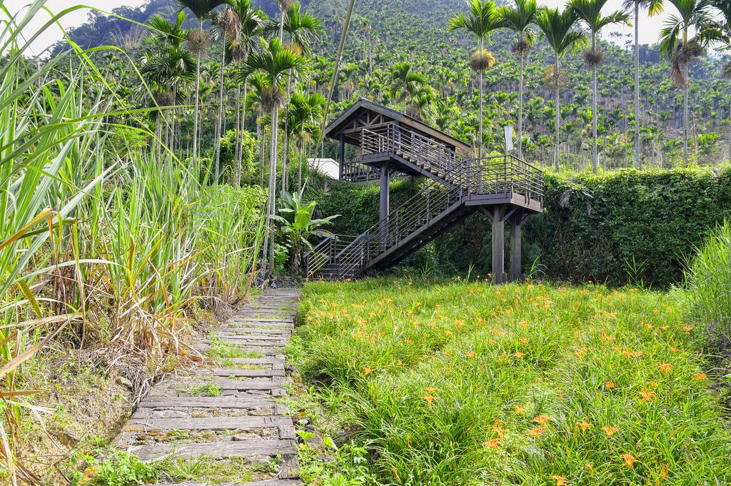 竹坑溪步道_DSC8387.jpg