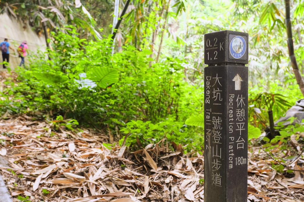 大坑二號步道_DSF7544.jpg