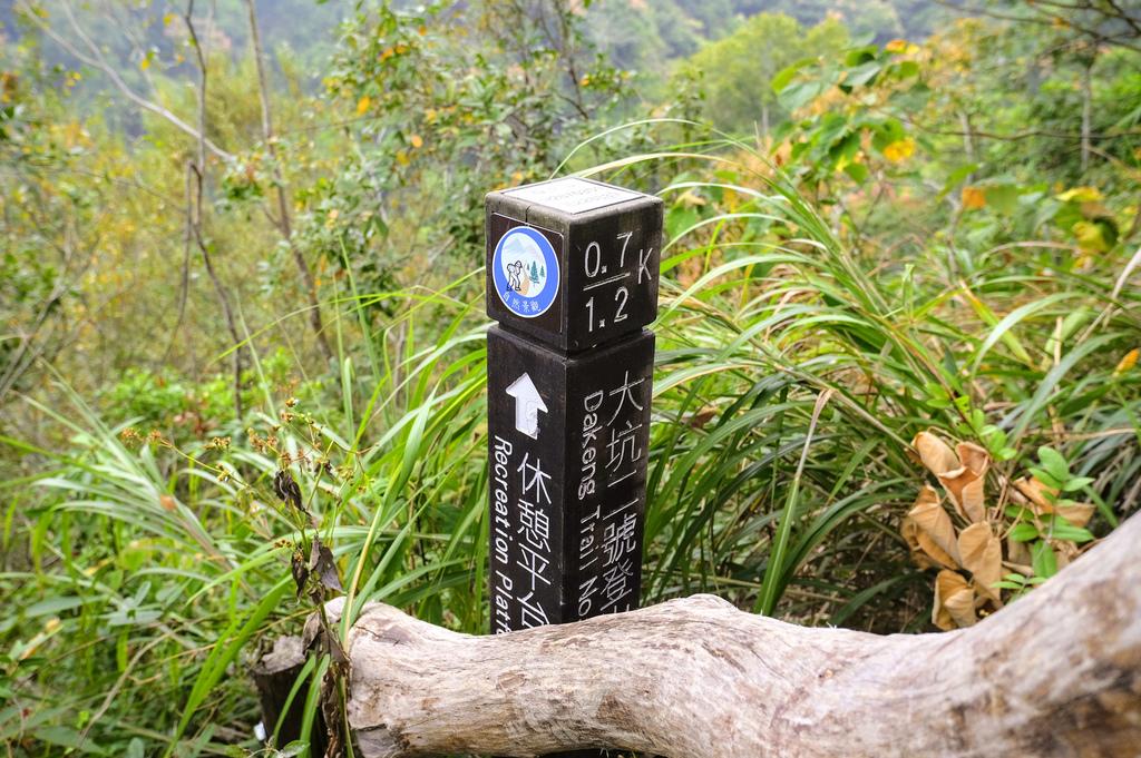 大坑二號步道_DSF7788.jpg