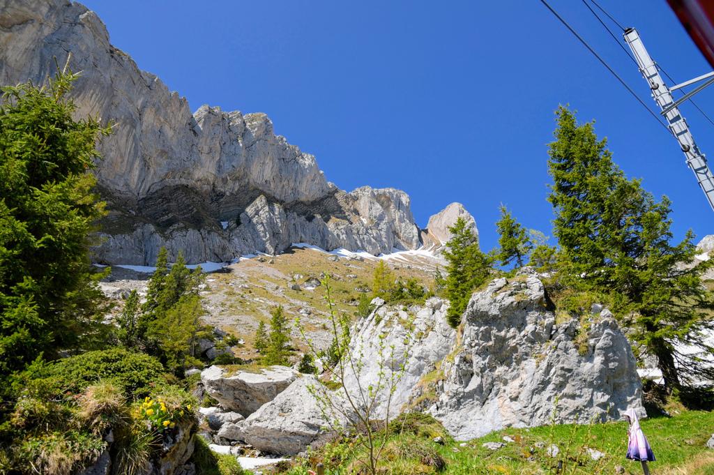 皮拉圖斯山35.jpg