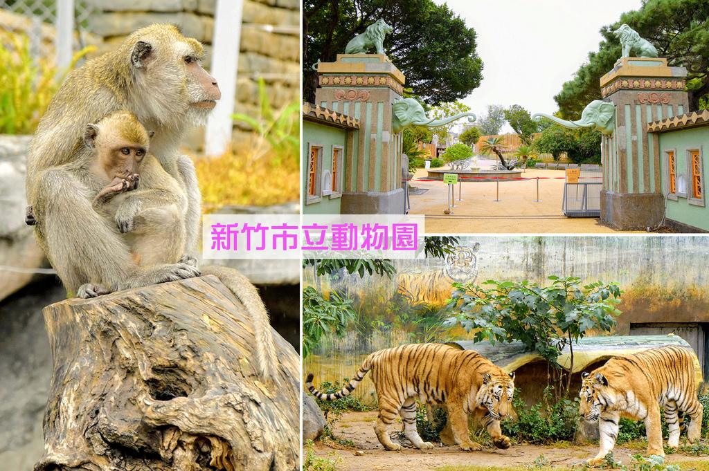 新竹市立動物園0.jpg