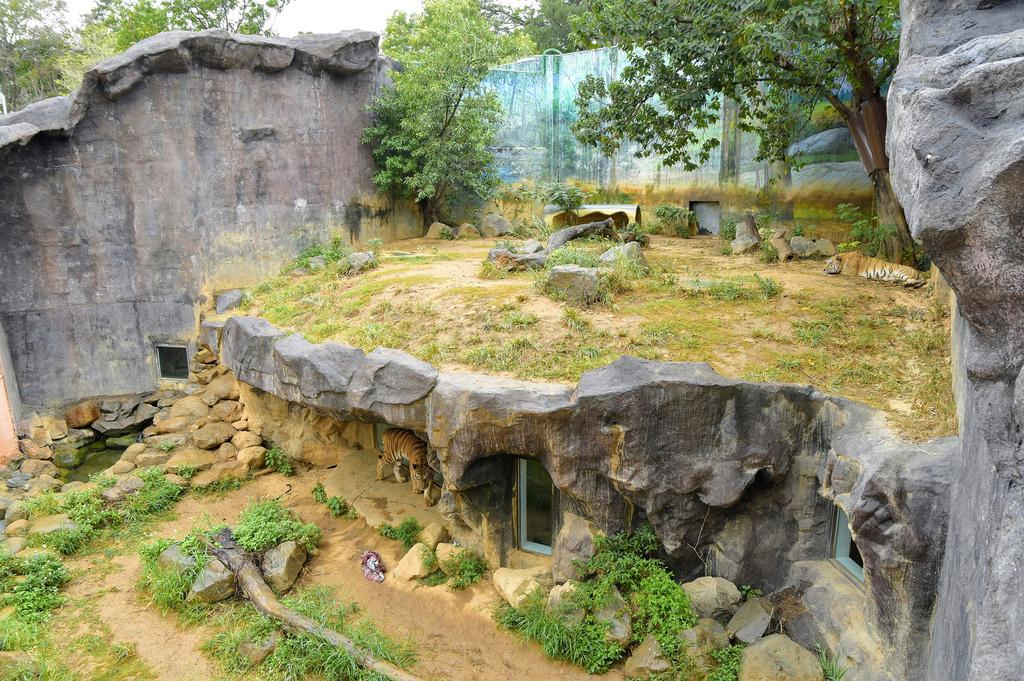新竹市立動物園9424.jpg