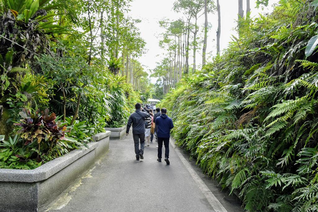 臺北市立動物園_DSC4338.jpg