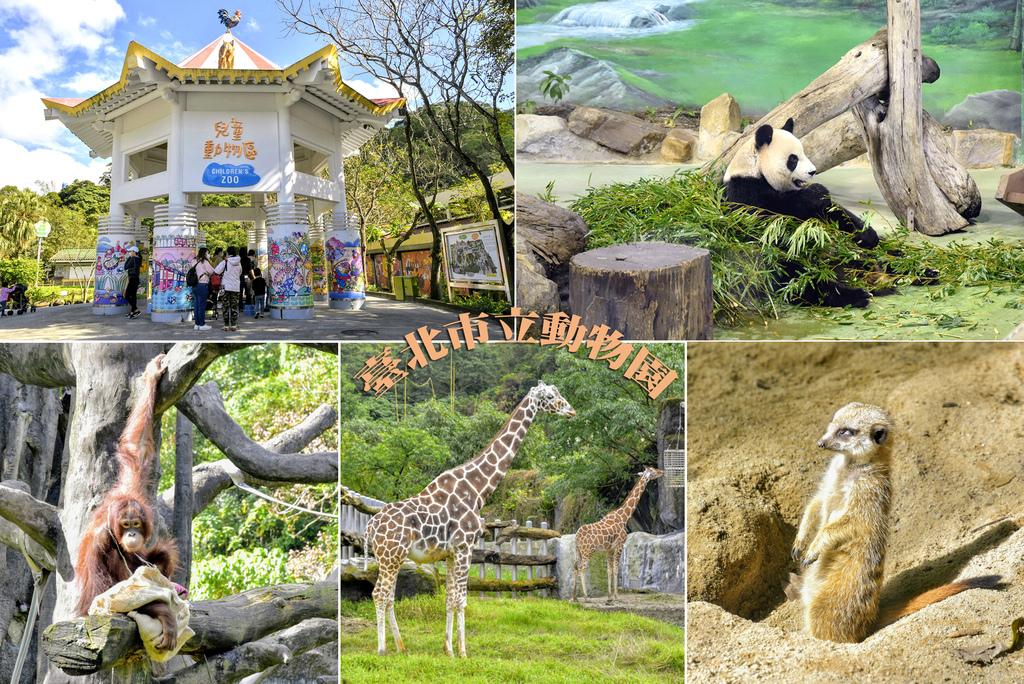 臺北市立動物園1.jpg