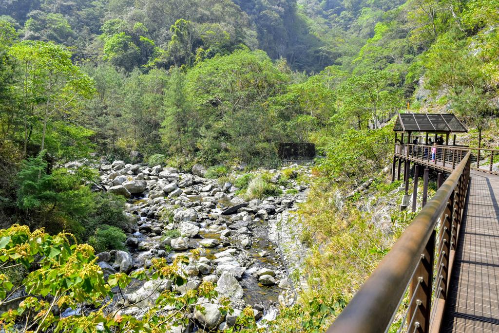 八仙山森林遊樂區_DSC0507.jpg
