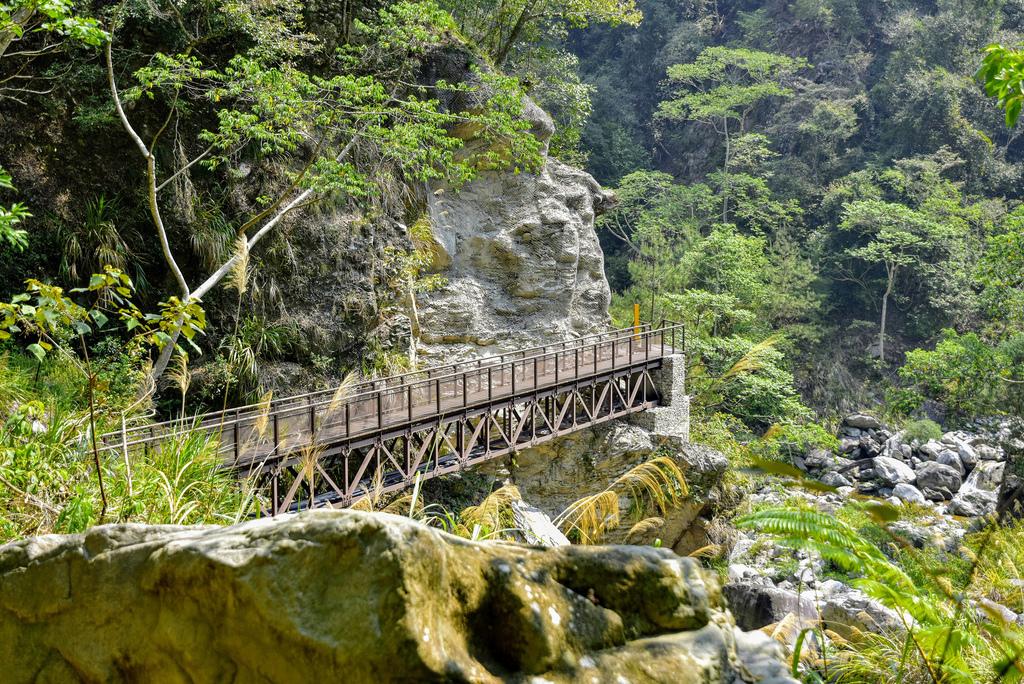 八仙山森林遊樂區_DSC0532.jpg