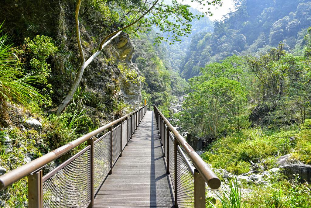 八仙山森林遊樂區_DSC0528.jpg