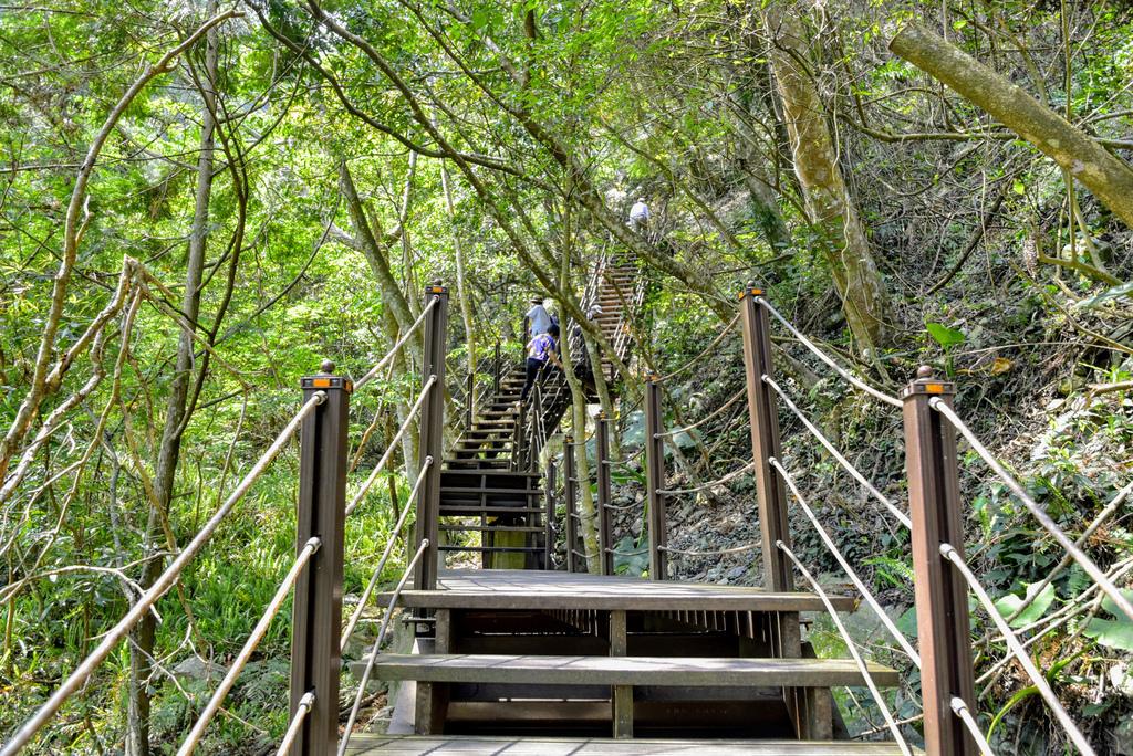 八仙山森林遊樂區_DSC0541.jpg