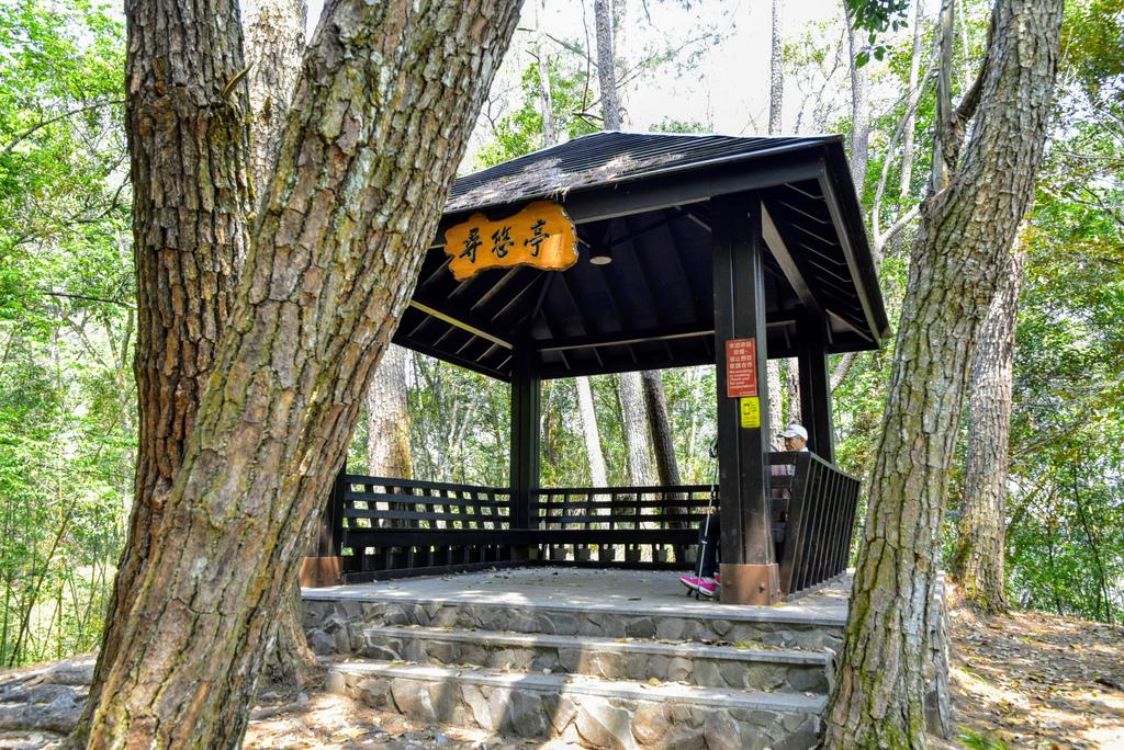 八仙山森林遊樂區_DSC0578.jpg