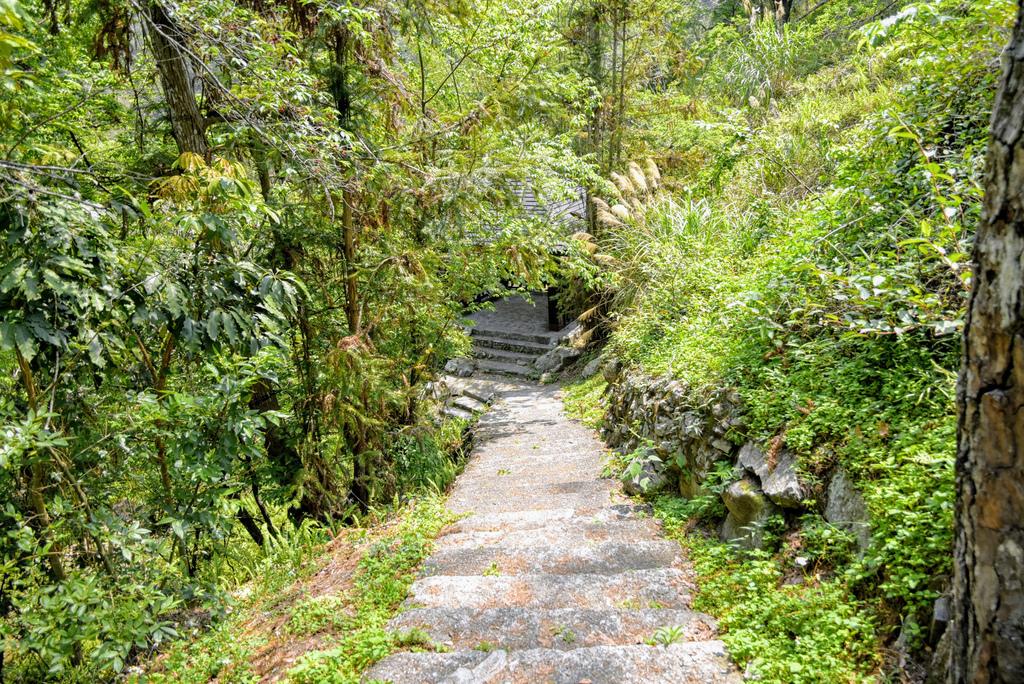 八仙山森林遊樂區_DSC0623.jpg