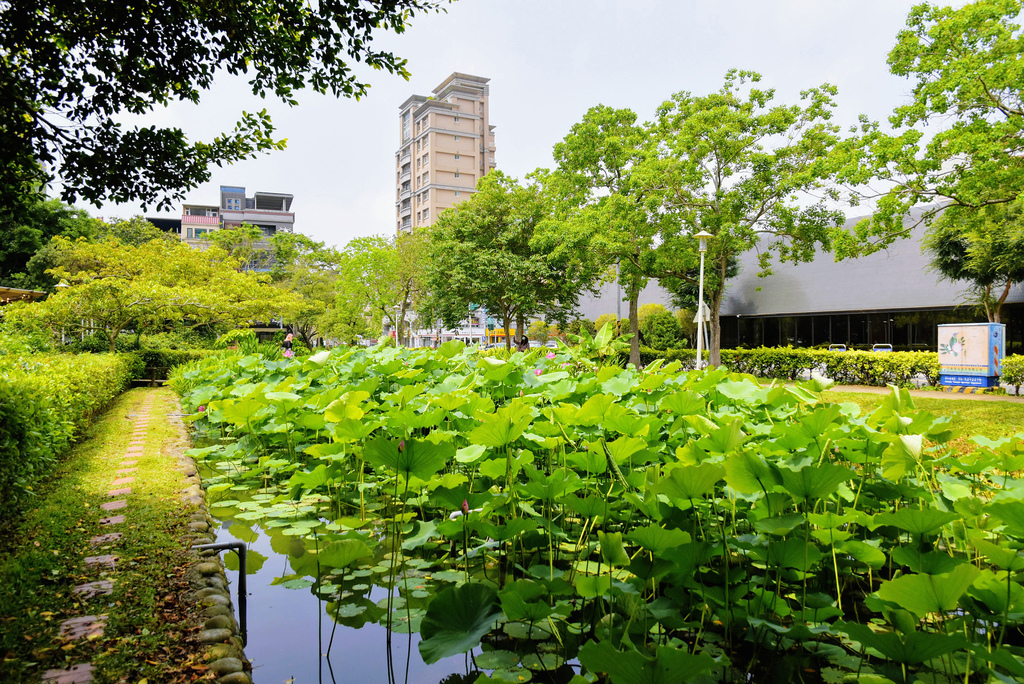 新瓦屋客家文化園區_DSC3173.jpg