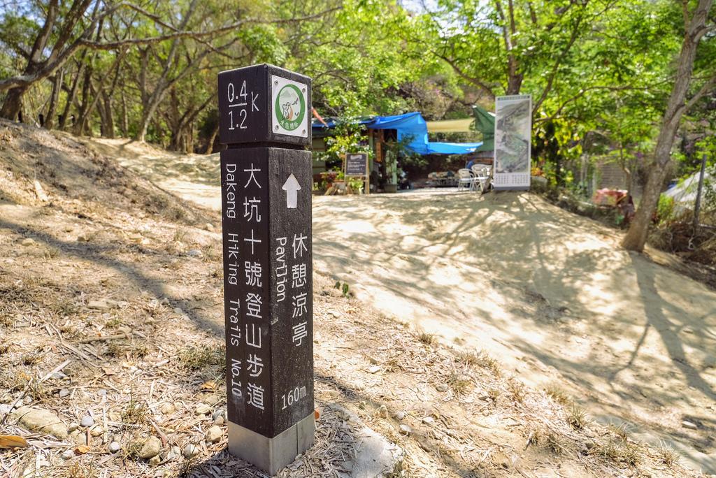 大坑10號步道_DSF2290.jpg