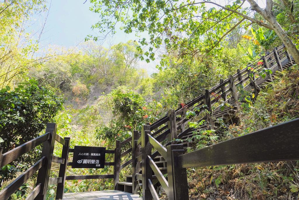 大坑10號步道_DSF2335.jpg