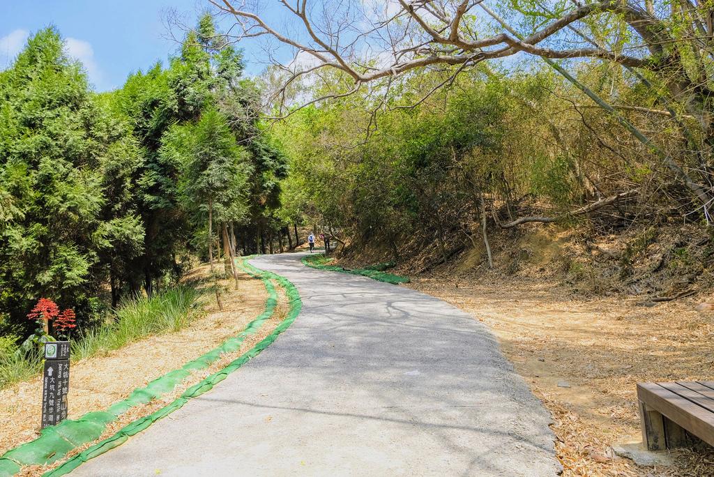 大坑10號步道_DSF2435.jpg