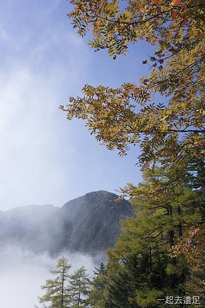 Tsubakuro008.jpg