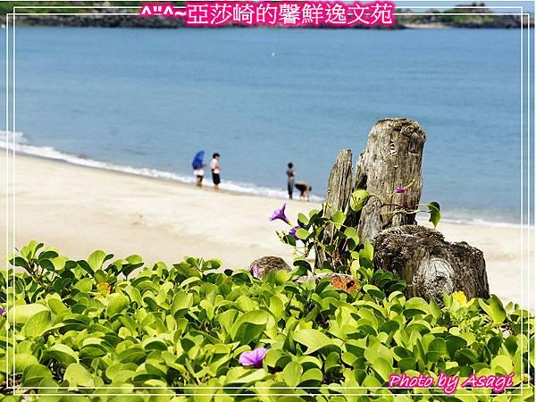 台灣好行|皇冠北海岸線|亞莎崎看見精緻旅遊P09