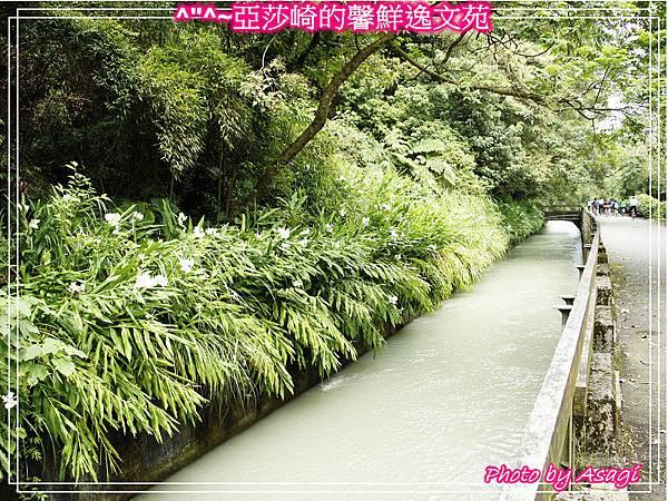 台灣好行|桃園慈湖線|亞莎崎的復古文化之旅P09
