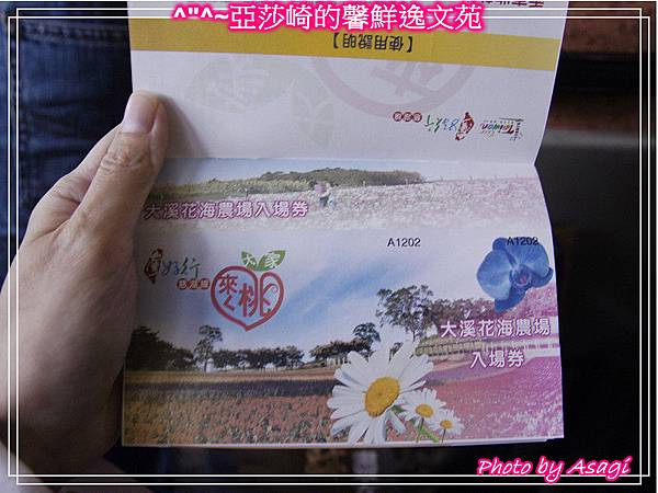 台灣好行|桃園慈湖線|亞莎崎的復古文化之旅P16