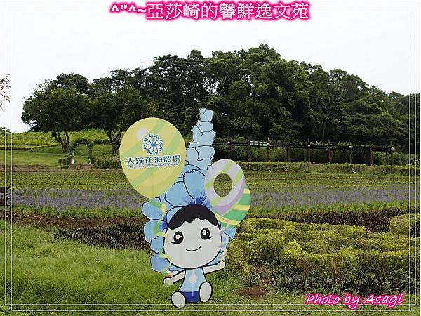 台灣好行|桃園慈湖線|亞莎崎的復古文化之旅P21