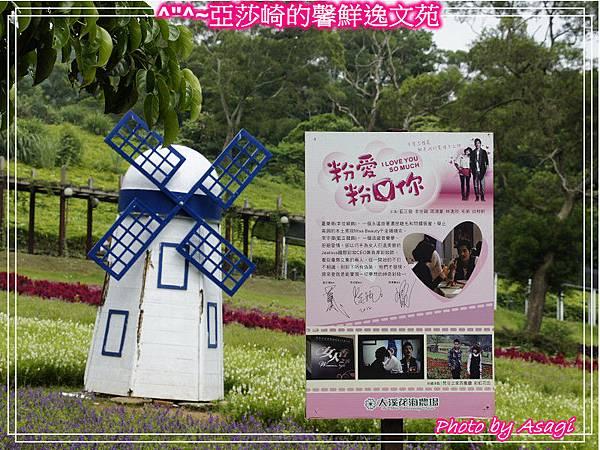 台灣好行|桃園慈湖線|亞莎崎的復古文化之旅P24