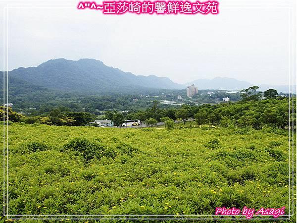 台灣好行|桃園慈湖線|亞莎崎的復古文化之旅P30