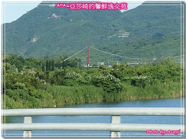 台灣好行|黃金福隆線|亞莎崎東北角驚嘆山水P32