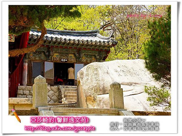 釜山首爾追星旅行