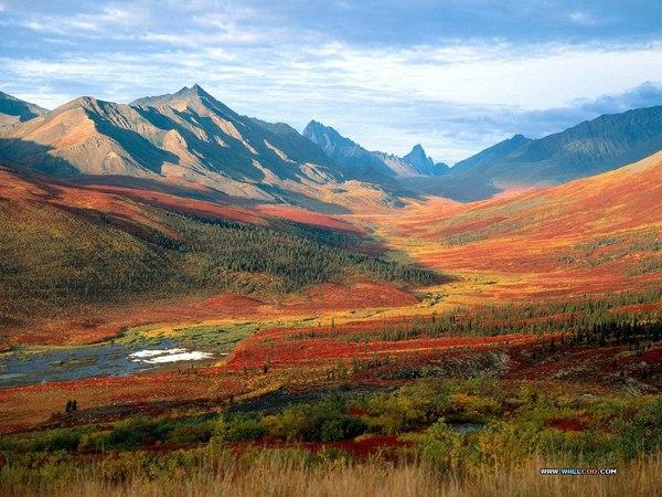 The Beautiful Scenery of Autumn 27