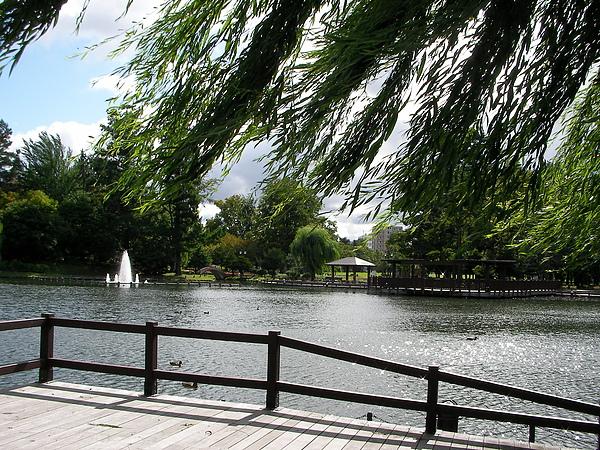常盤公園.JPG