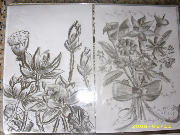 蓮花/素描ㄉ花束