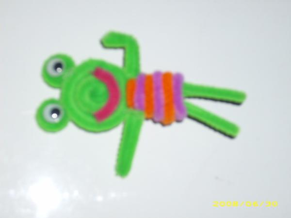 毛根  -   青蛙
