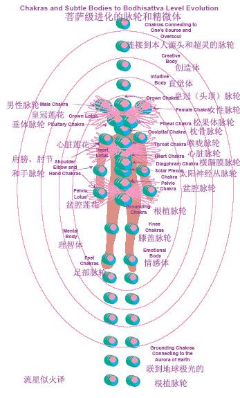 菩薩級脈輪及晶微體