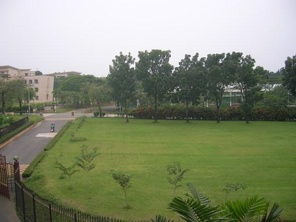 宿舍窗外1