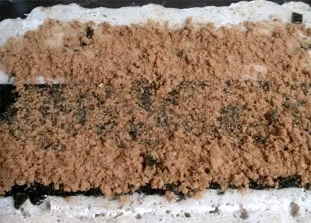 海苔魚鬆麵包捲5