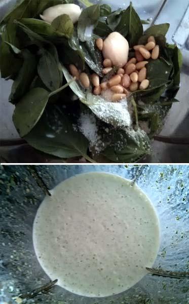 青醬菇雞義麵1