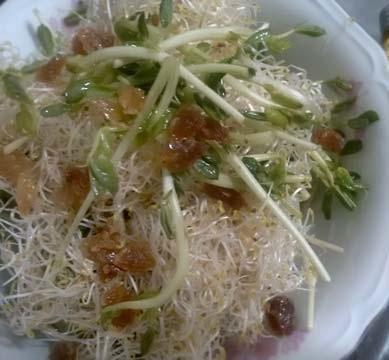 蔬食沙拉捲1